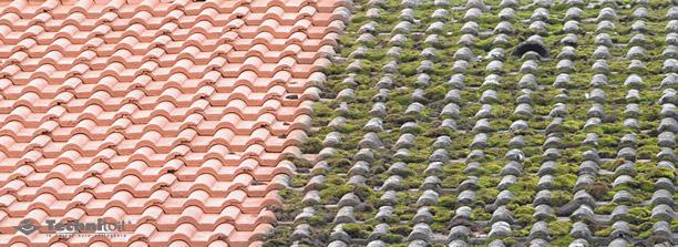 technitoit toiture durable
