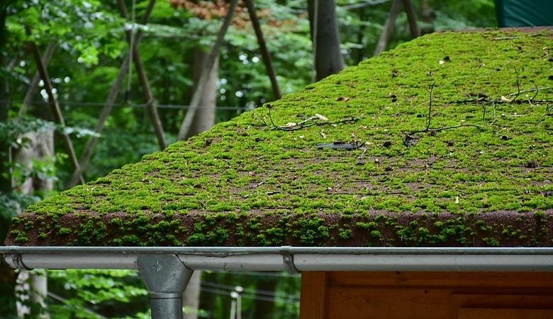 technitoitcolor, l'hydrofuge idéal pour une rénovation de toiture