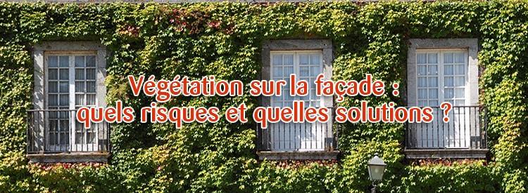 végétation sur la façade
