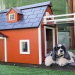 créez un coin chaleureux pour vos animaux