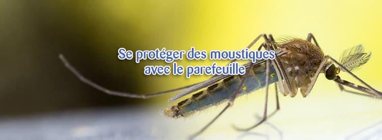 moustiques parefeuille