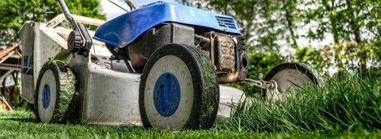 comment bien tondre sa pelouse